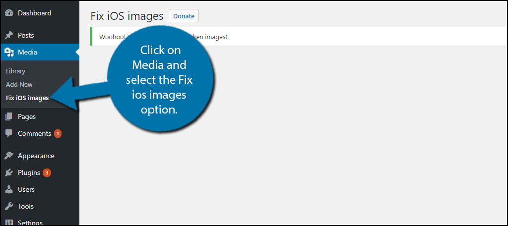 click on Media and select the Fix ios images option.