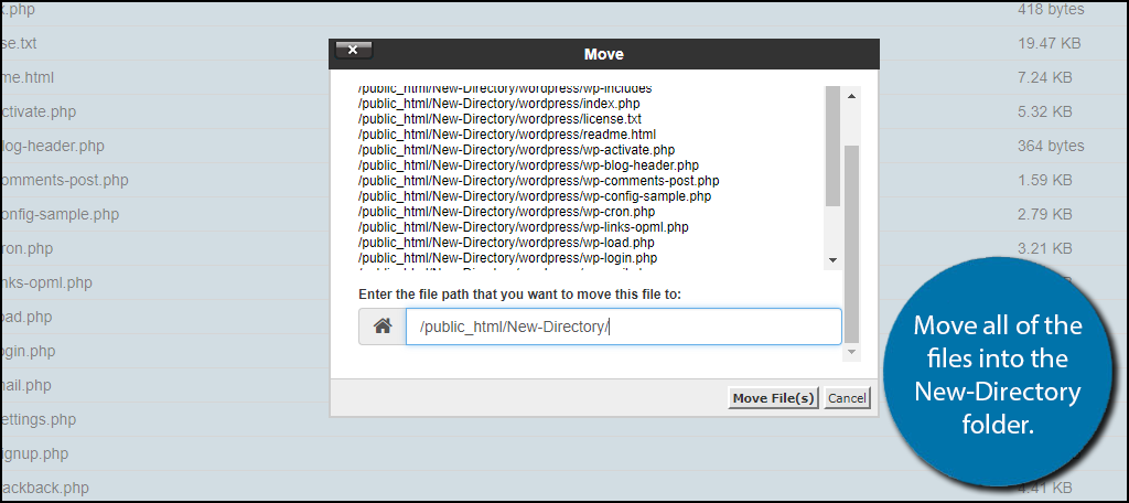 Move all of the files into the New-Directory folder.