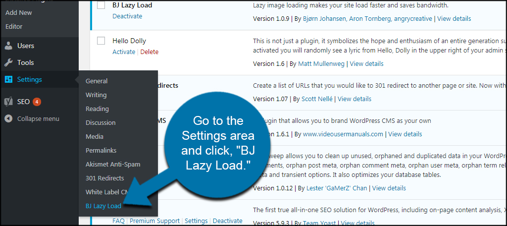 BJ Lazy Load Settings
