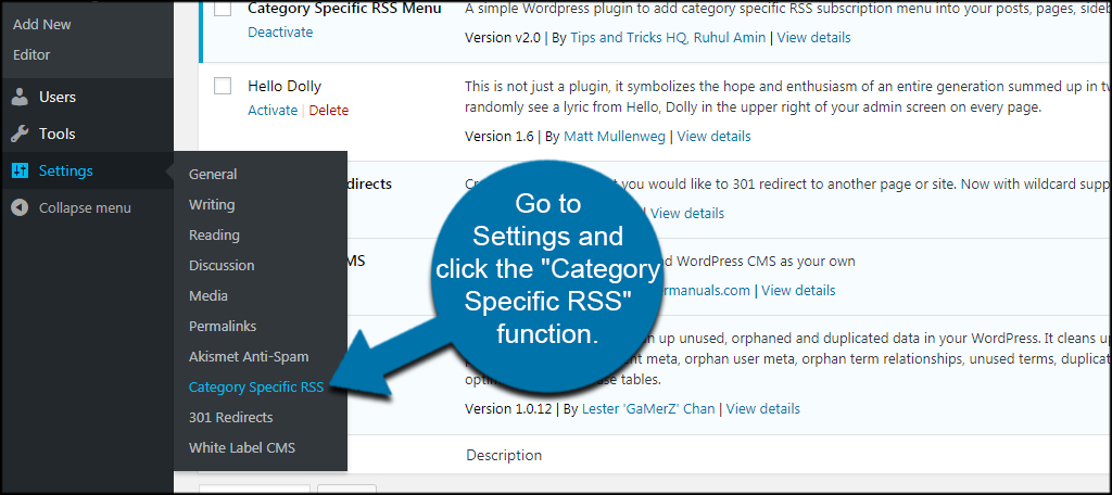 Category RSS Settings