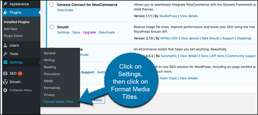 Click settings then format media titles