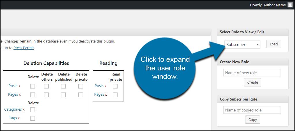 User Role Window