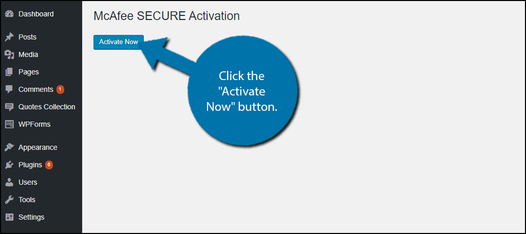 "click on the ""Activate Now"" button."