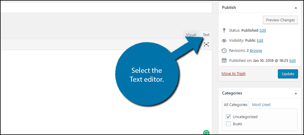 Select the Text editor.