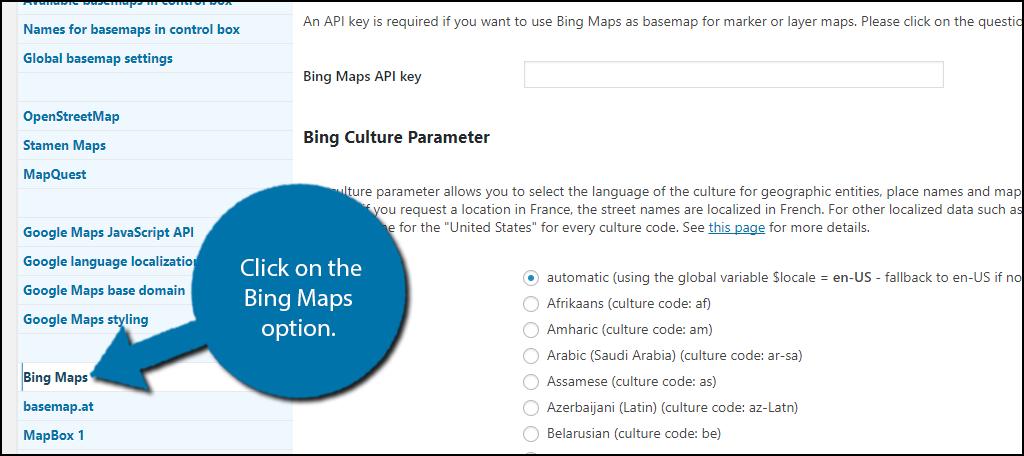 click on the Bing Maps option.