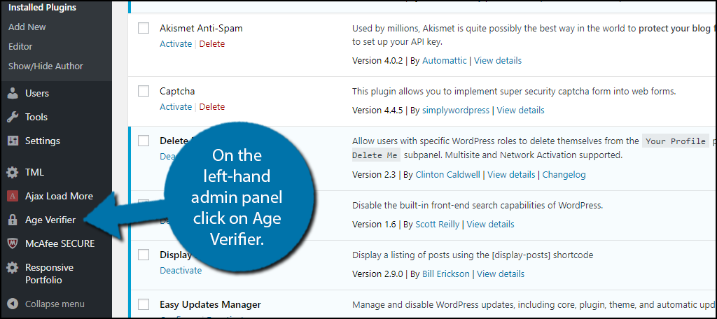 On the left-hand admin panel click on Age Verifier.