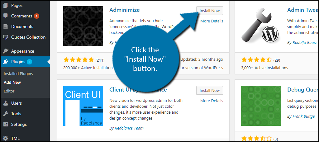 "Click the ""Install Now"" button."