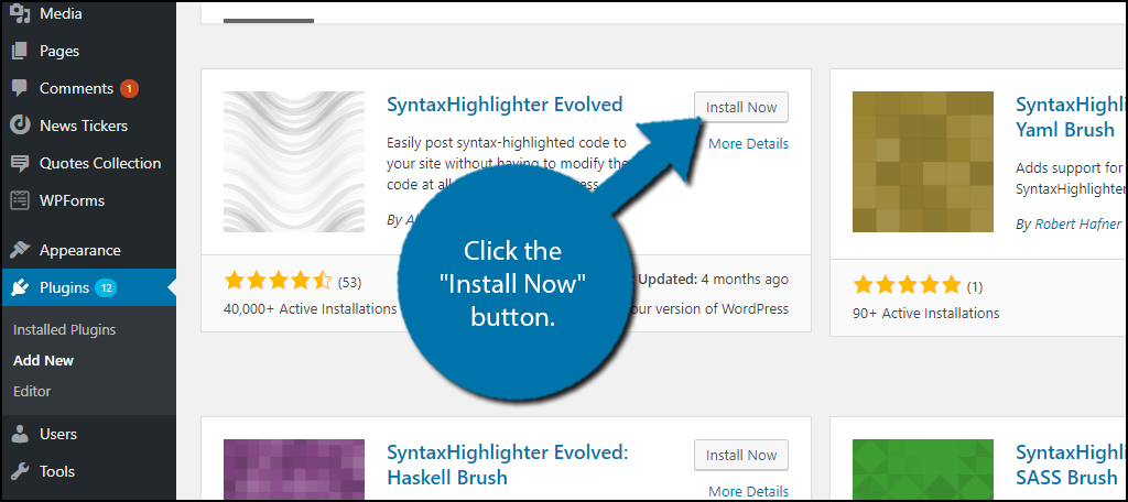 """Click the """"Install Now"""" button."""