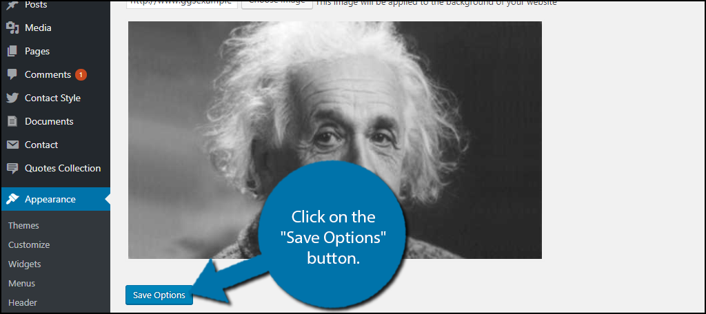 """Click on the """"Save Options"""" button."""