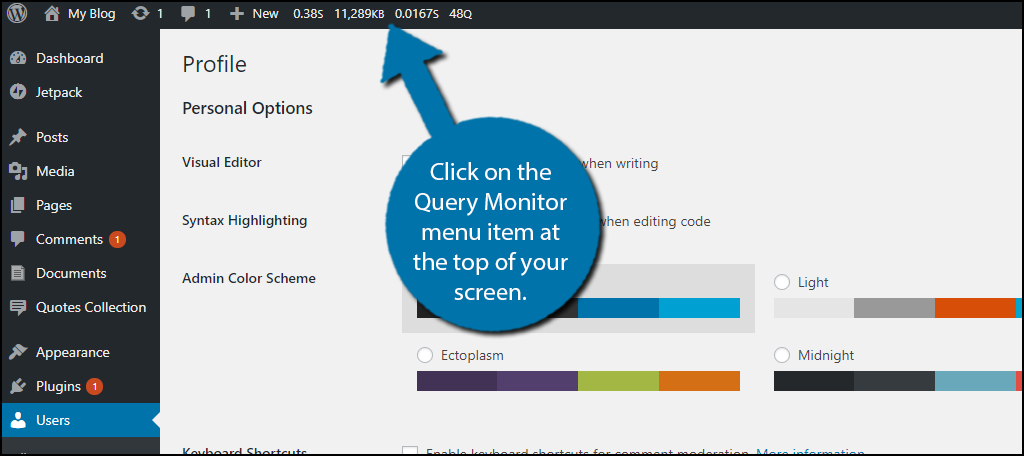 Click on the Query Monitor menu item at the top of your screen.