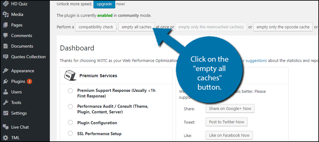 """Click on the """"empty all caches"""" button."""