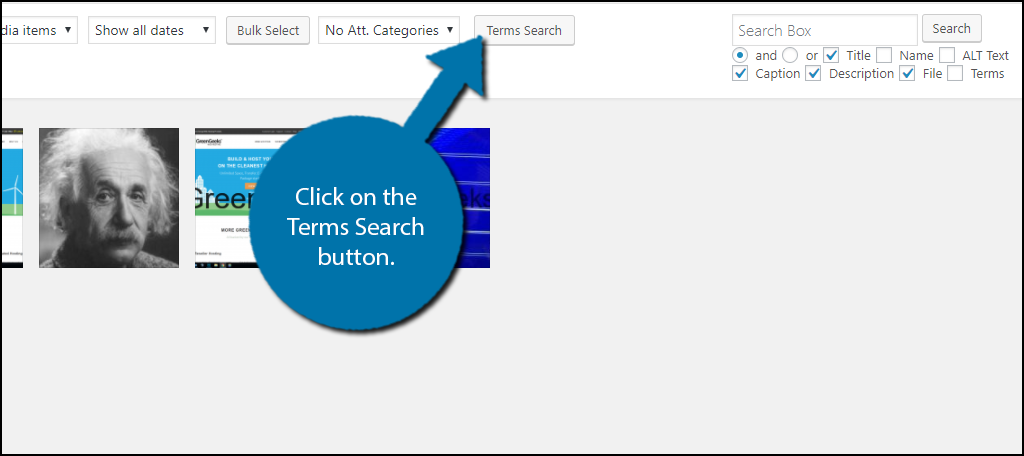 Click on the Terms Search button.