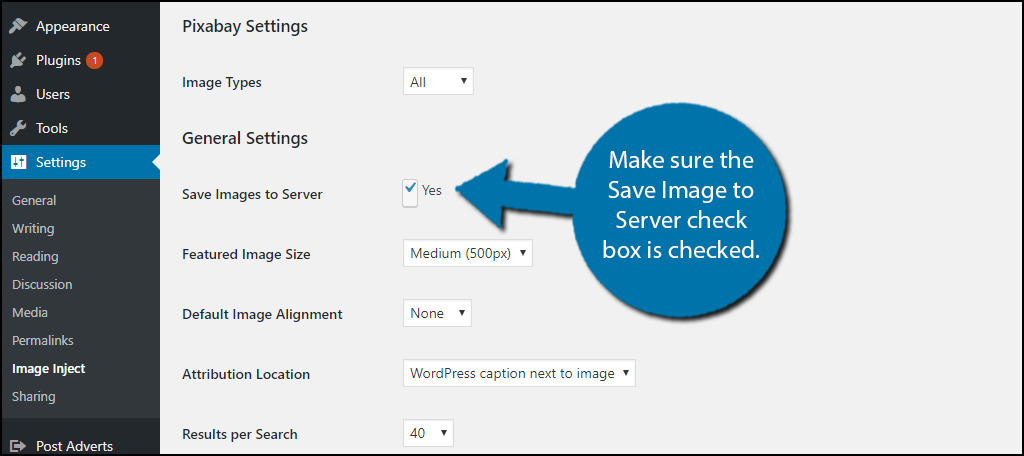 Make sure the Save Image to Server check box is checked.