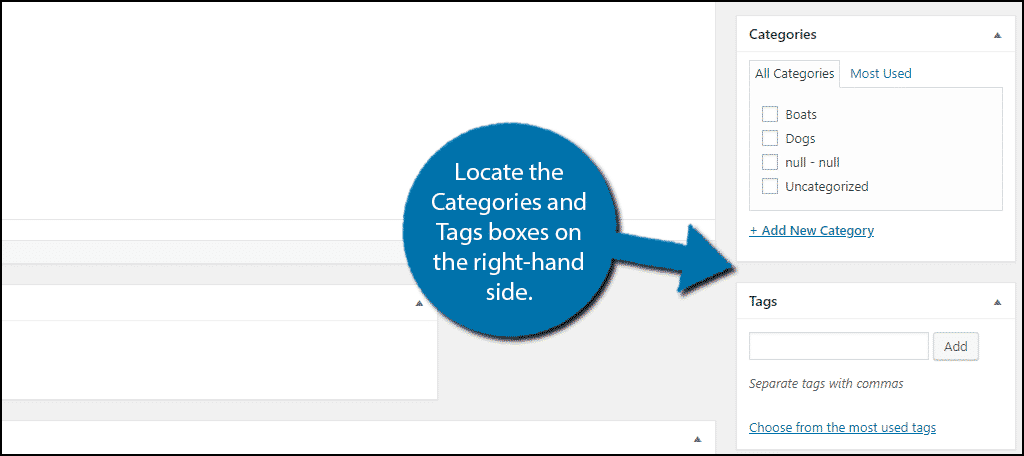 Locate the Categories and Tags boxes.