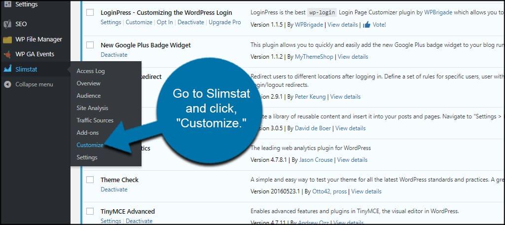 Customize Slimstat
