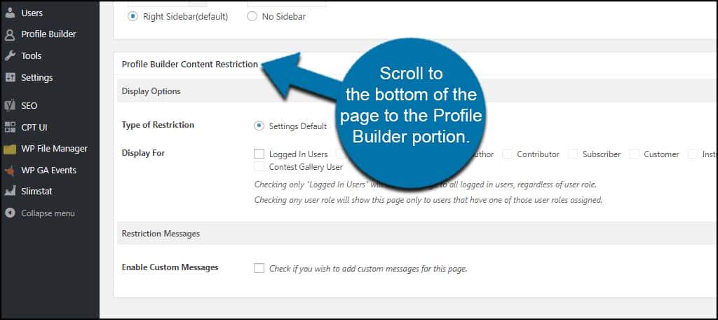 Profile Builder Portion