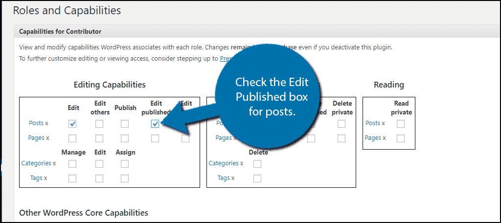 Check the Edit Published box for posts.