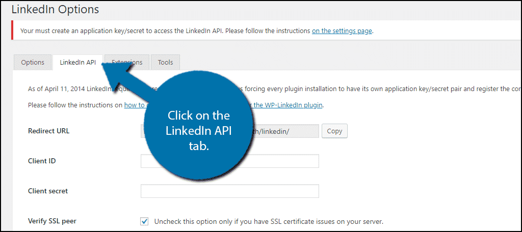 Click on the LinkedIn API tab.