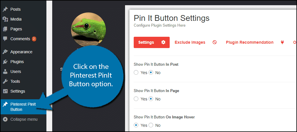 Click on the Pinterest PinIt Button option.