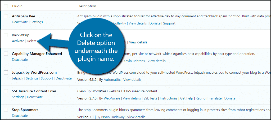 Click on the Delete option to delete the plugin.