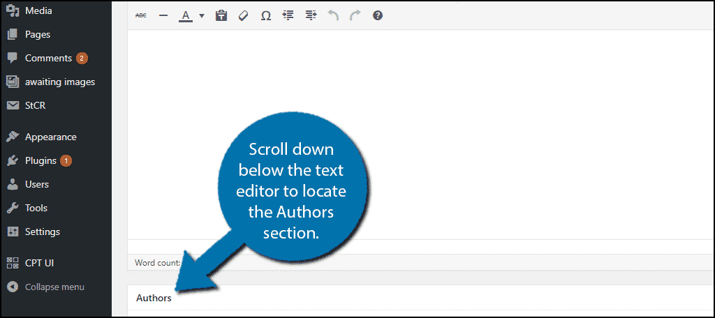 Scroll down below the text editor to locate the Authors section.
