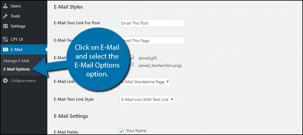Click on E-Mail and select the E-Mail Options option.