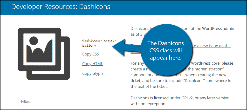 The Dashicons CSS class will appear next to it.