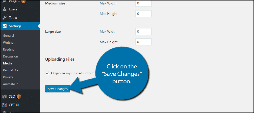 "Click on the ""Save Changes"" button."
