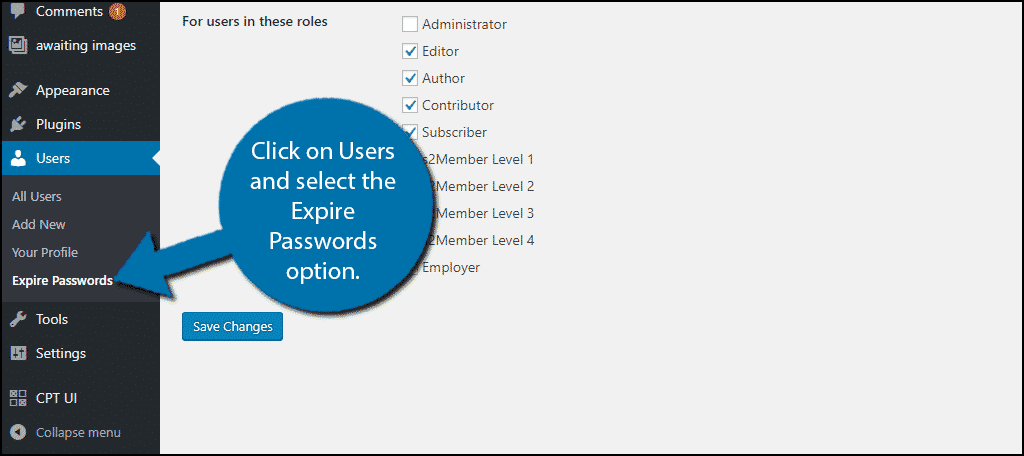 Click on Users and select the Expire Passwords option.