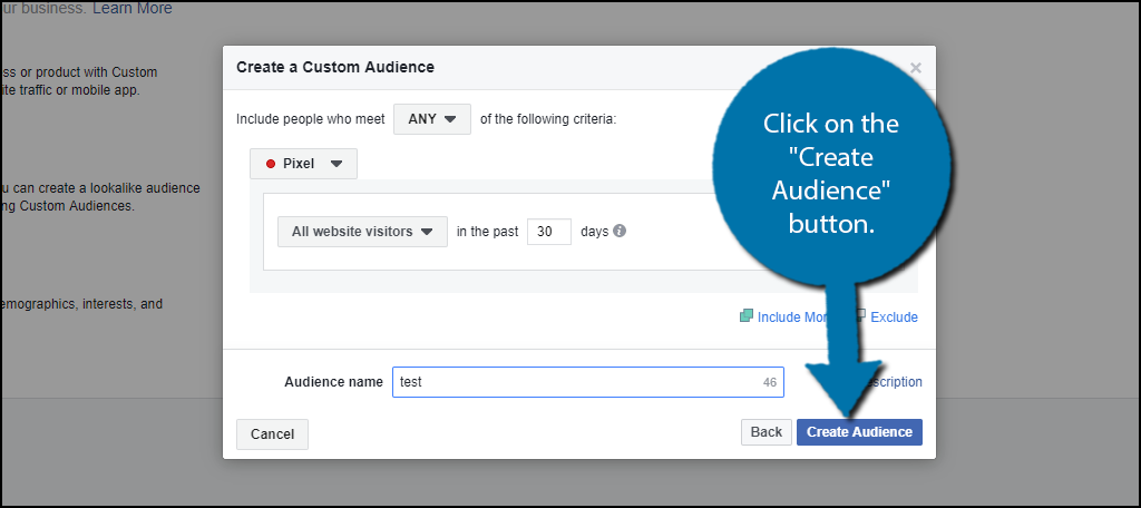 """click on the """"Create Audience"""" button."""