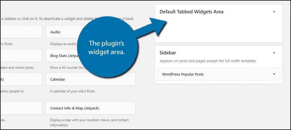 The plugin's widget area.