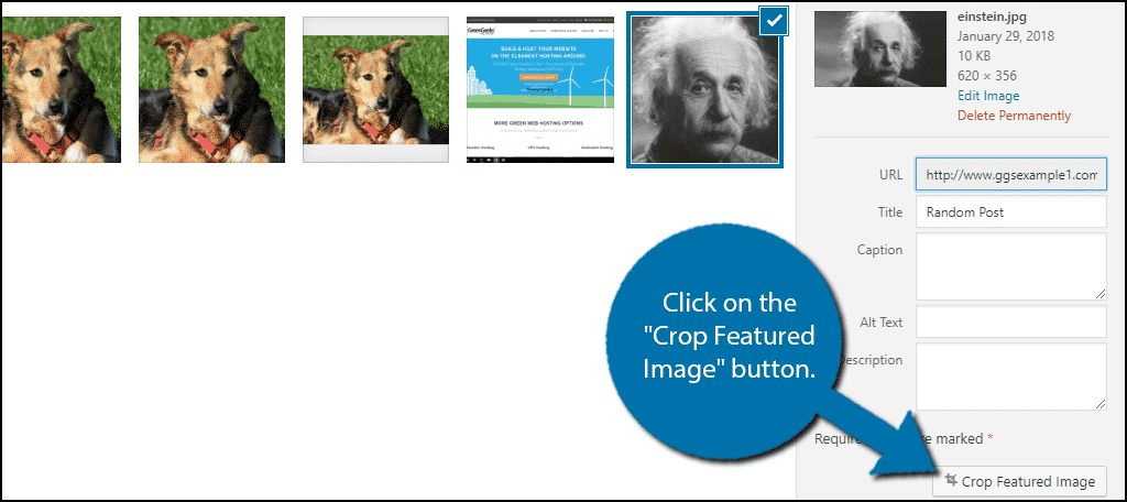 "Click on the ""Crop Featured Image"" button."