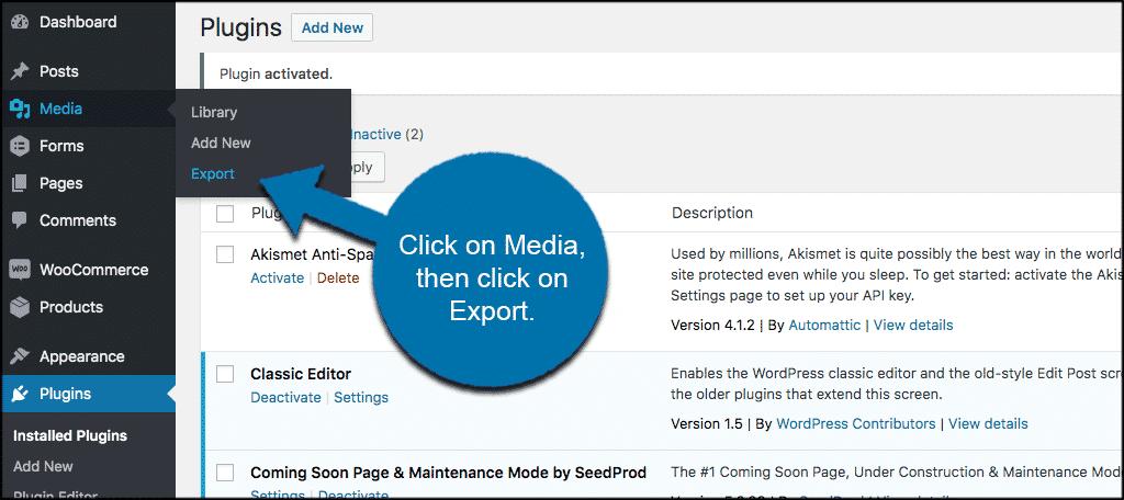 Click media then export