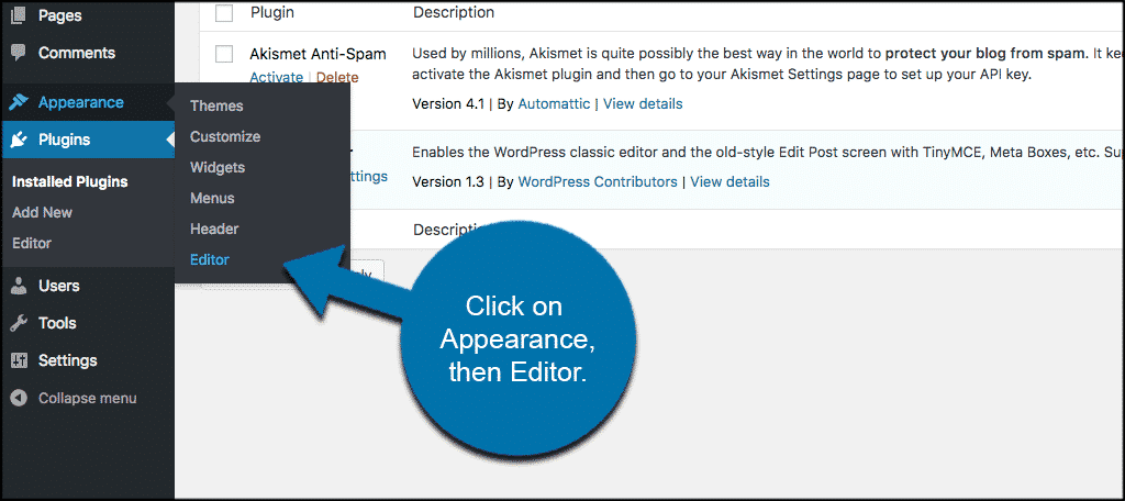 Click on appearance then editor to access functions.php file