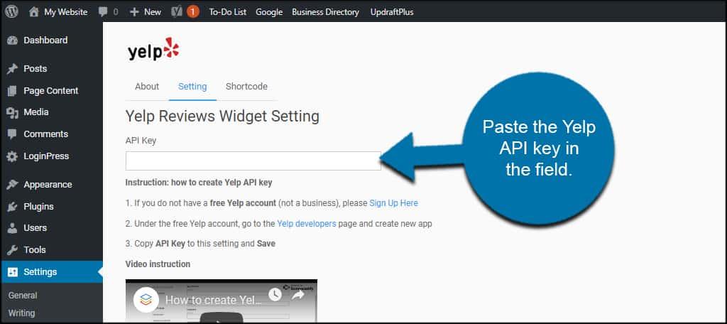 Paste API Key