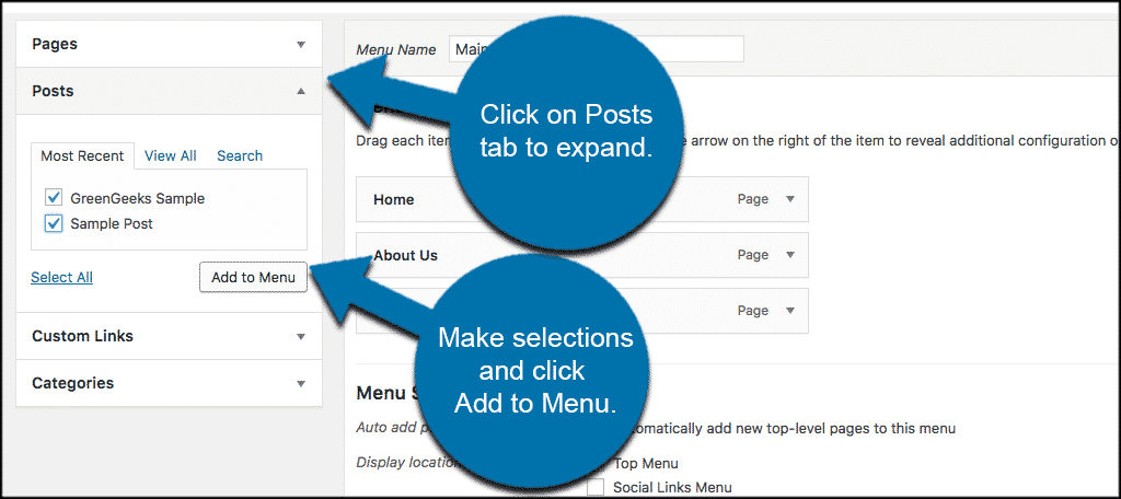 Click on posts box to expand and then add custom post types to wordpress menu