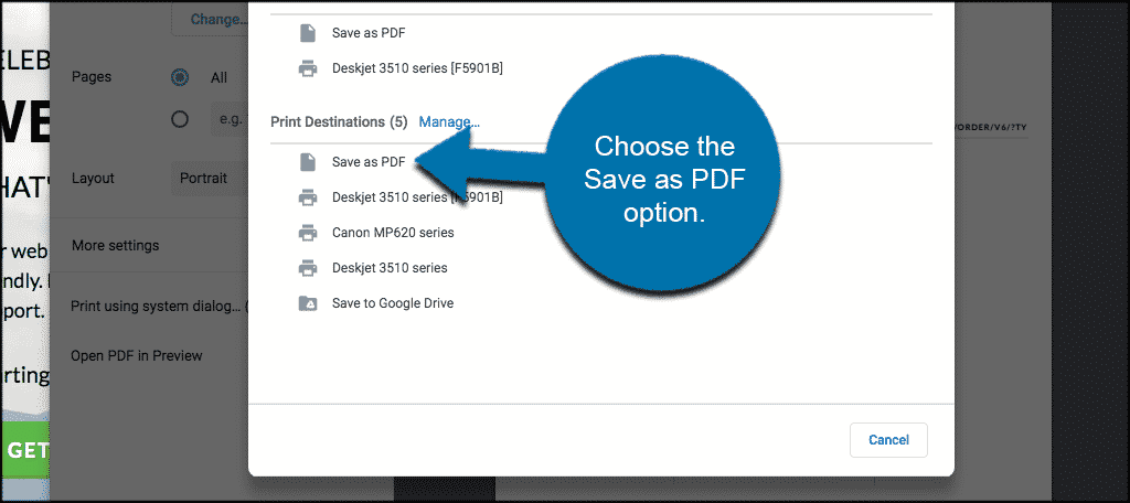 Choose the save as pdf option