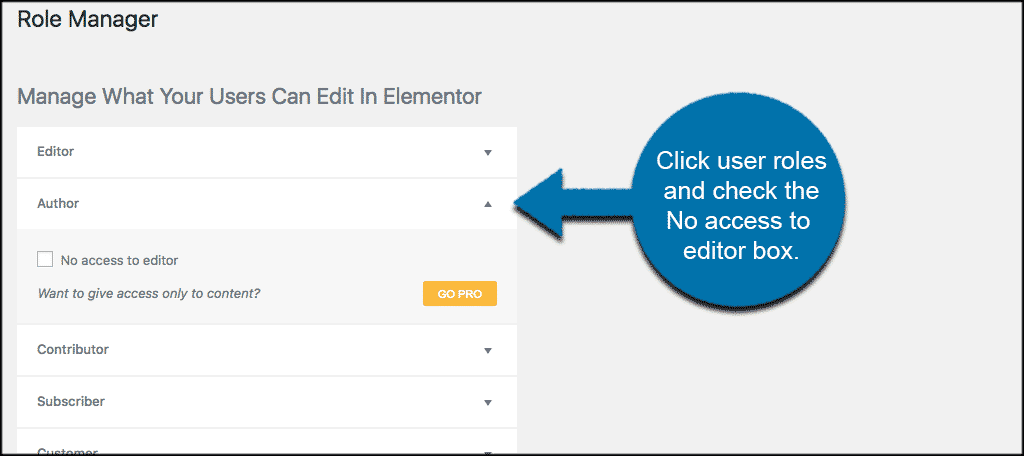 Elementor role manager page