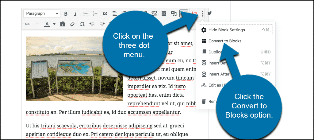 Click on the three dot menu and select convert to blocks in Gutenberg block editor