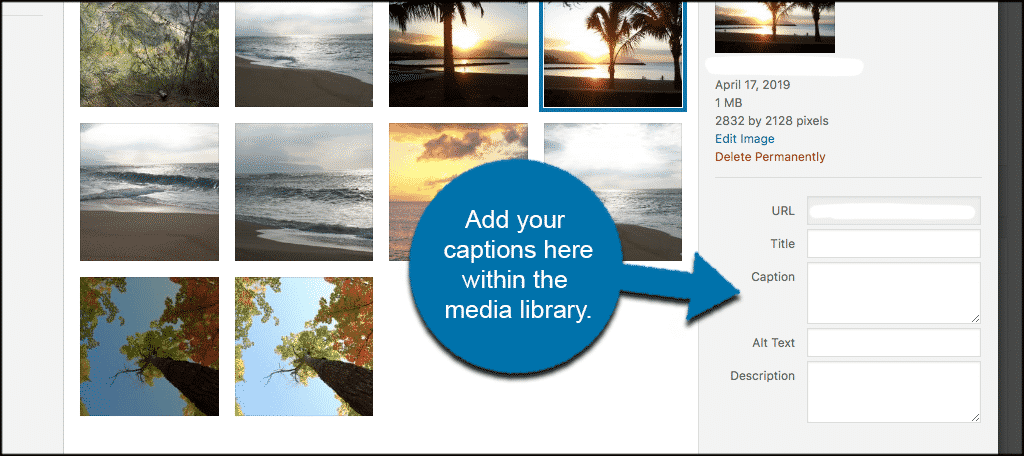 Add captions within the wordpress media library