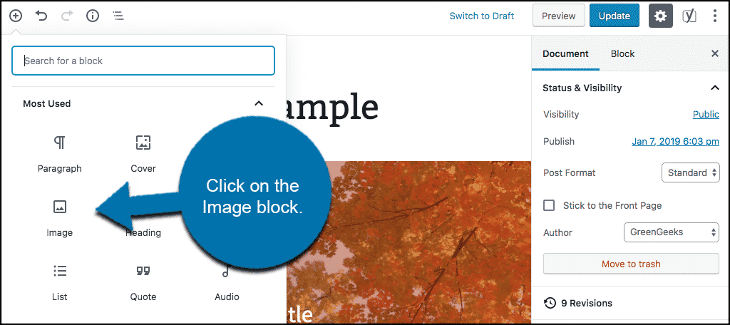 Click on the image block to add an image
