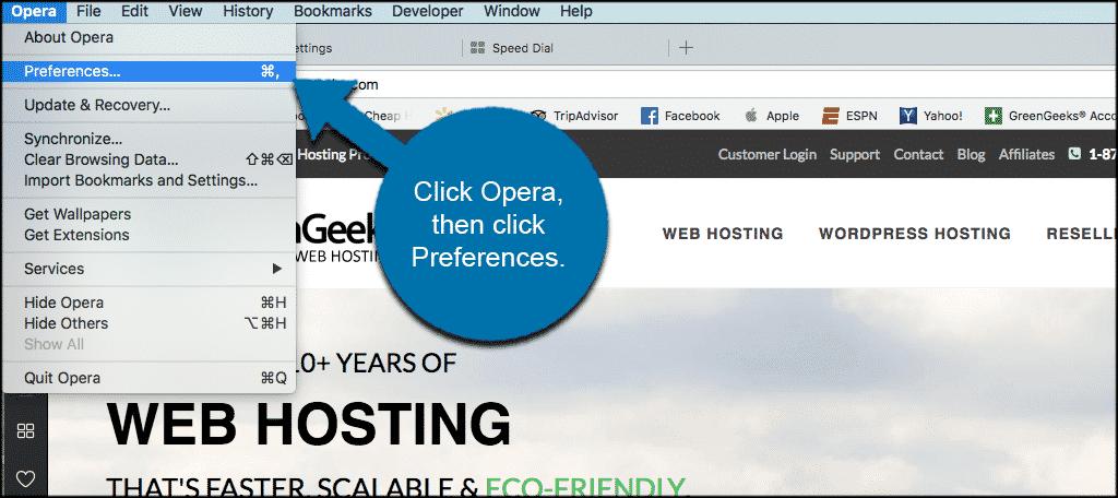 Click menu then settings in opera browser