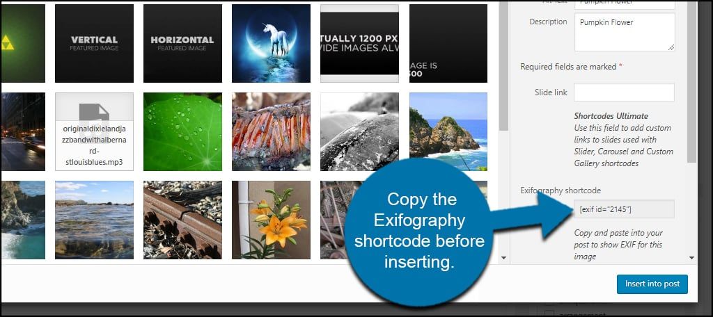 Copy Exifography Shortcode