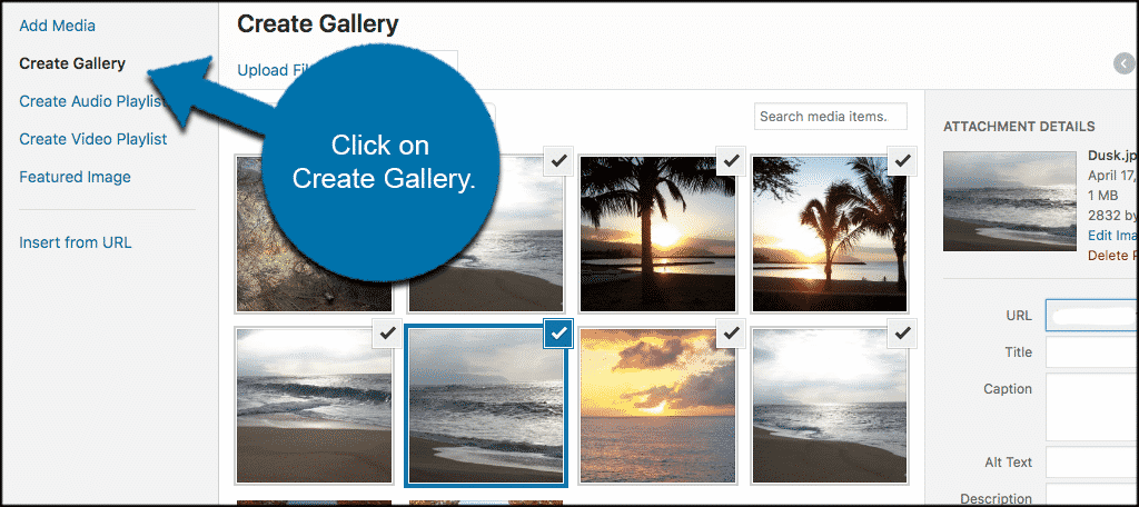 Click on the create gallery button
