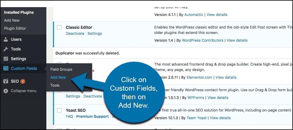 Click on custom fields then on add new