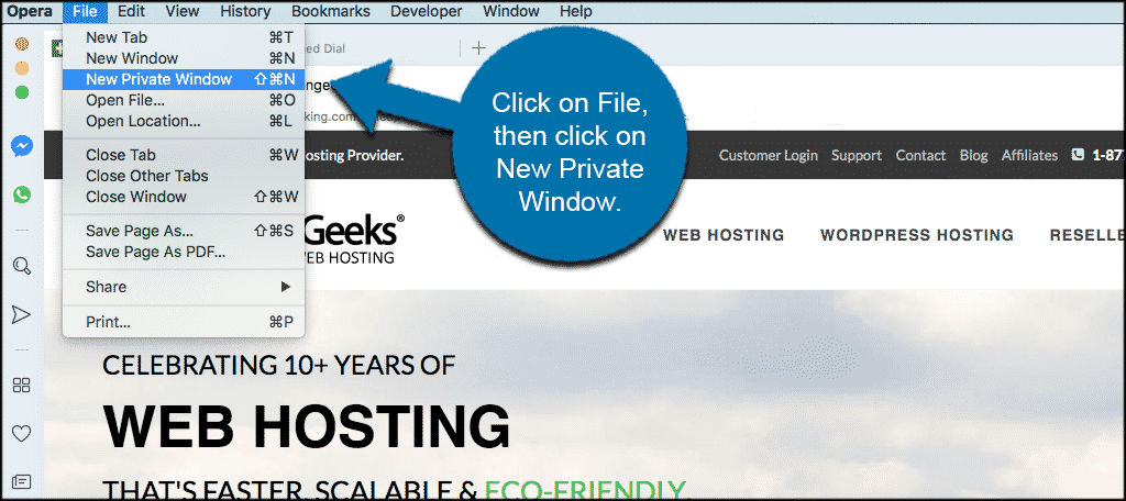 Click on file then new private window in the opera browser