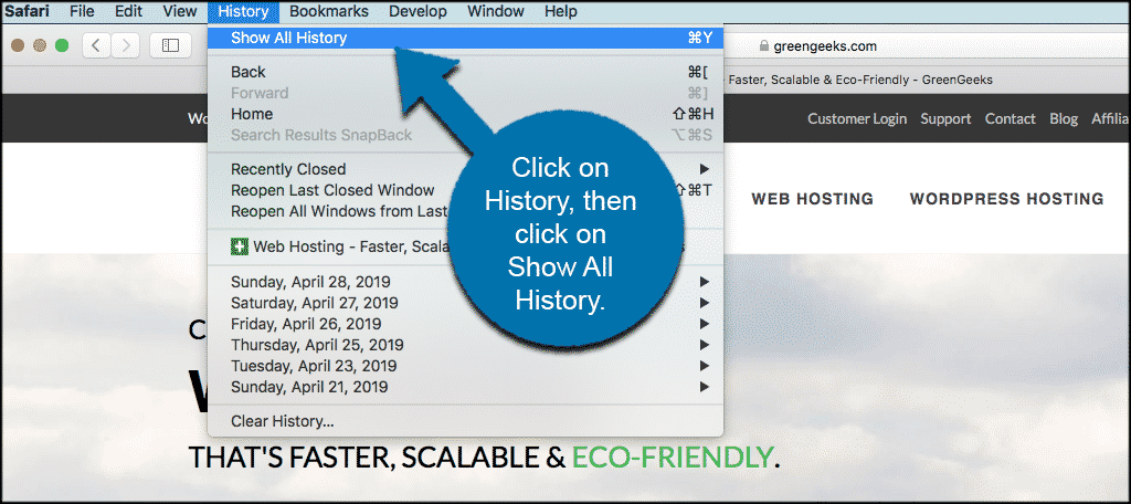 Click on history then show all history in safari browser