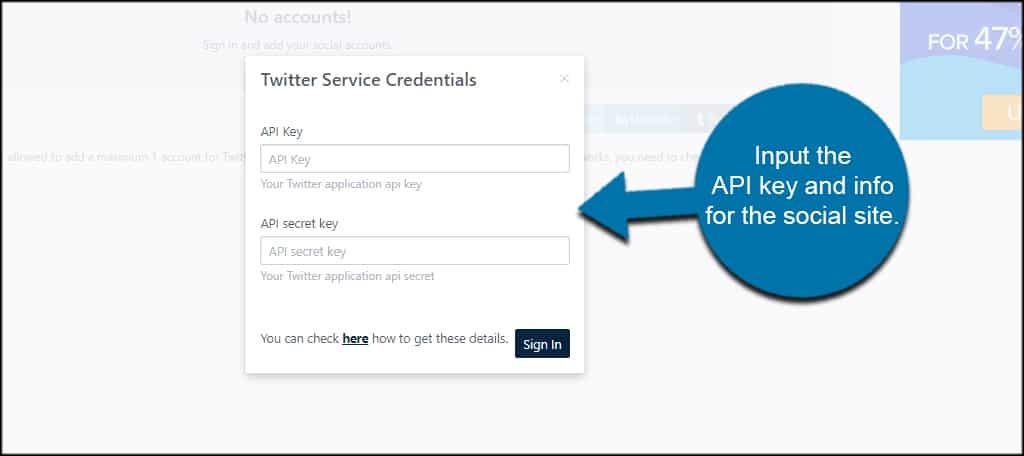 Input API Key