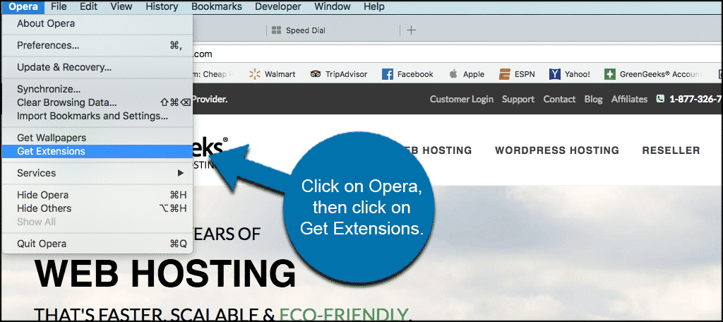 Click on opera then get extensions