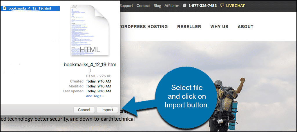 Select bookmarks file and click the import button
